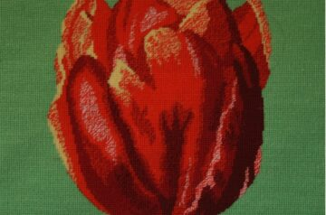 Flanders Tapestry Collection (Johan Verbruggen)